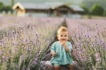 baby sitting in a lavender field