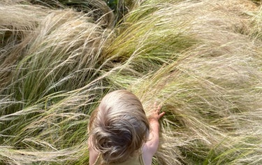 the author's daughter crawling in a field of grass, as seen from above
