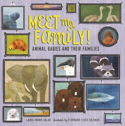 'Meet My Family! Animal Babies and Their Families' by Laura Purdie Salas and Stephanie Fizer Coleman