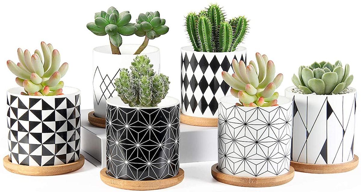 ZOUTOG Ceramic Succulent Pots (Set of 6)