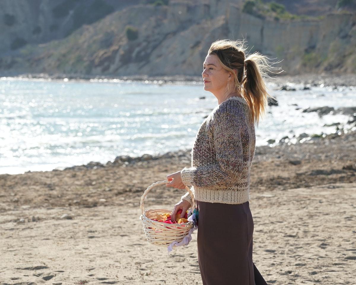 Ellen Pompeo in 'Grey's Anatomy' Season 17