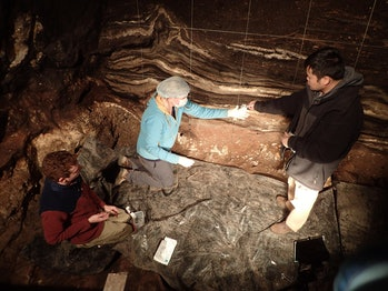 Scientists in Denisova Cave