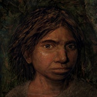 Who were the Denisovans? The ancient human is still an enigma
