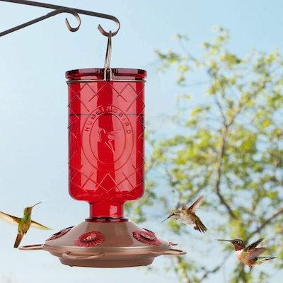 BOLITE Hummingbird Feeder