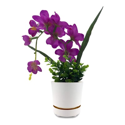 HBServices Self Watering + Self Aerating High Drainage Pot