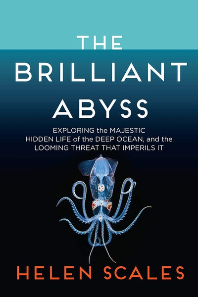 'The Brilliant Abyss: Exploring the Majestic Hidden Life of the Deep Ocean, and the Looming Threat T...