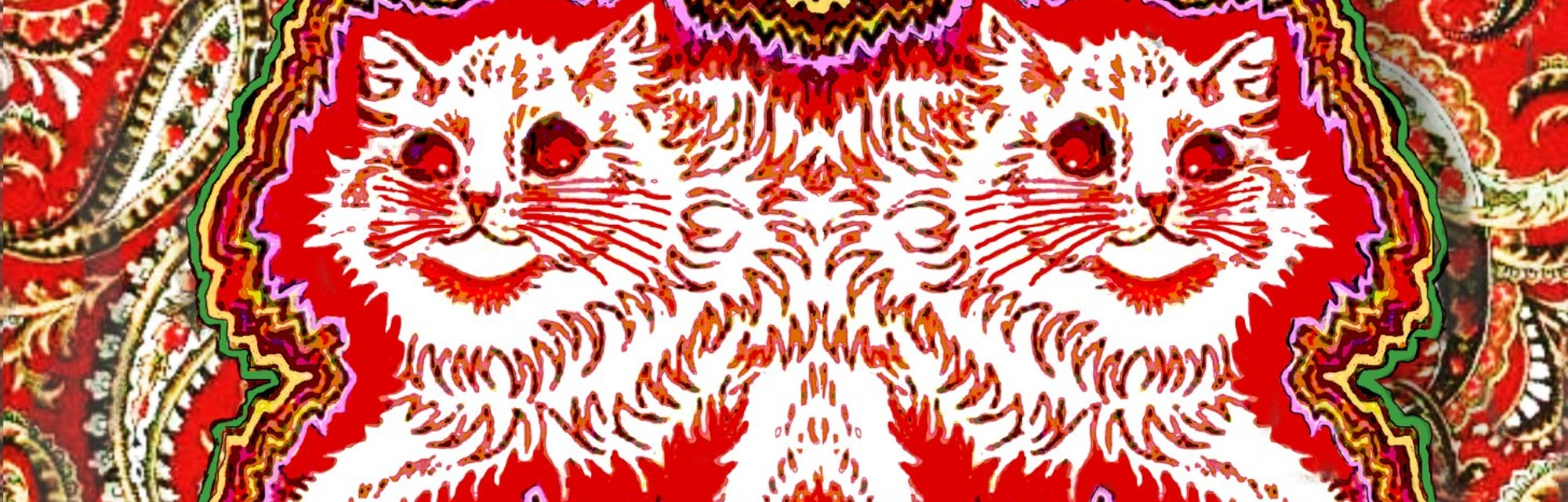 cats in psychedelic colors