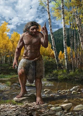 ancient human