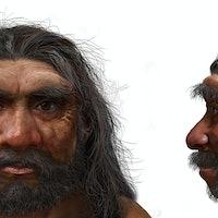 Dragon Man: Gargantuan cranium may reveal a new ancient human species