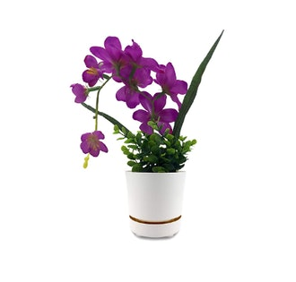 """HBServices USA 8"""" Self Watering High Drainage Plant Pot"""