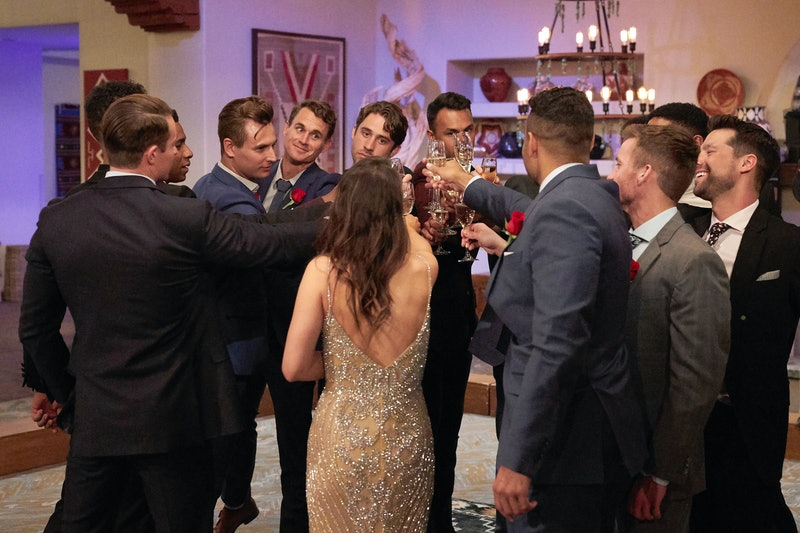 Katie Thurston toasting her 'Bachelorette' Season 17 contestants via ABC's press site
