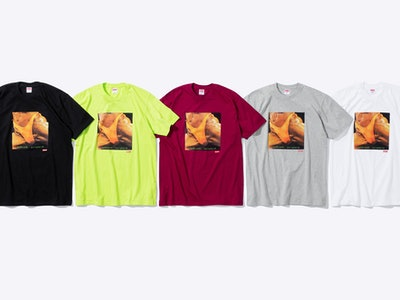 Supreme x Butthole Surfers Graphic Tee