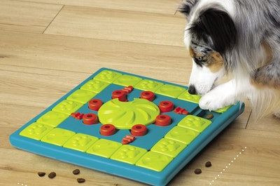 Nina Ottosson by Outward Hound Interactive Dog Puzzle