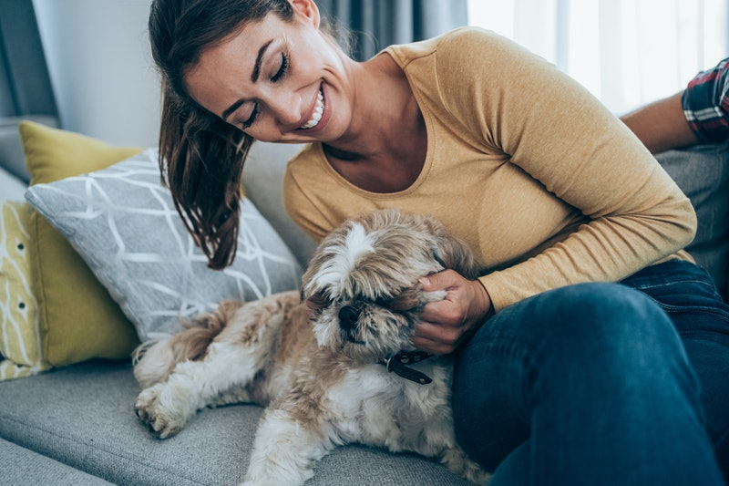 10 signs your dog loves you, according to an expert.