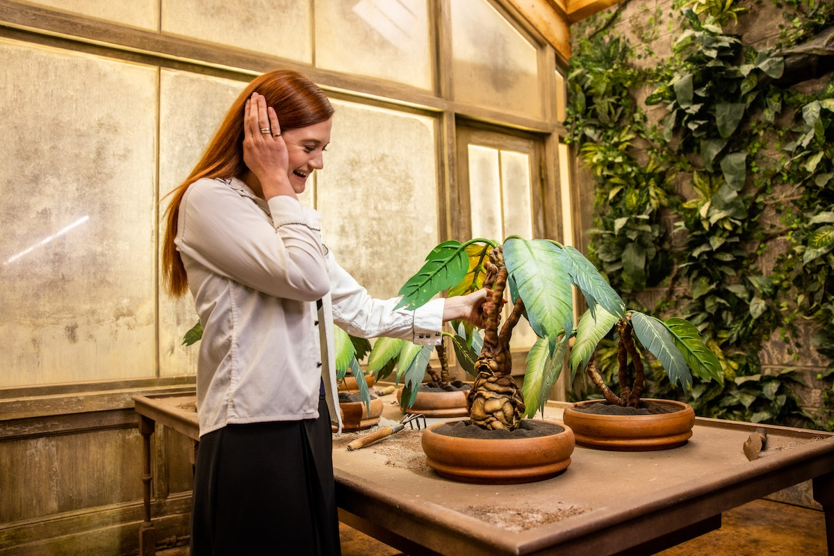 Bonnie Wright from the 'Harry Potter' movies pulls out a mandrake in the Herbology class photo opp on the Warner Bros. Studio Tour in Hollywood.