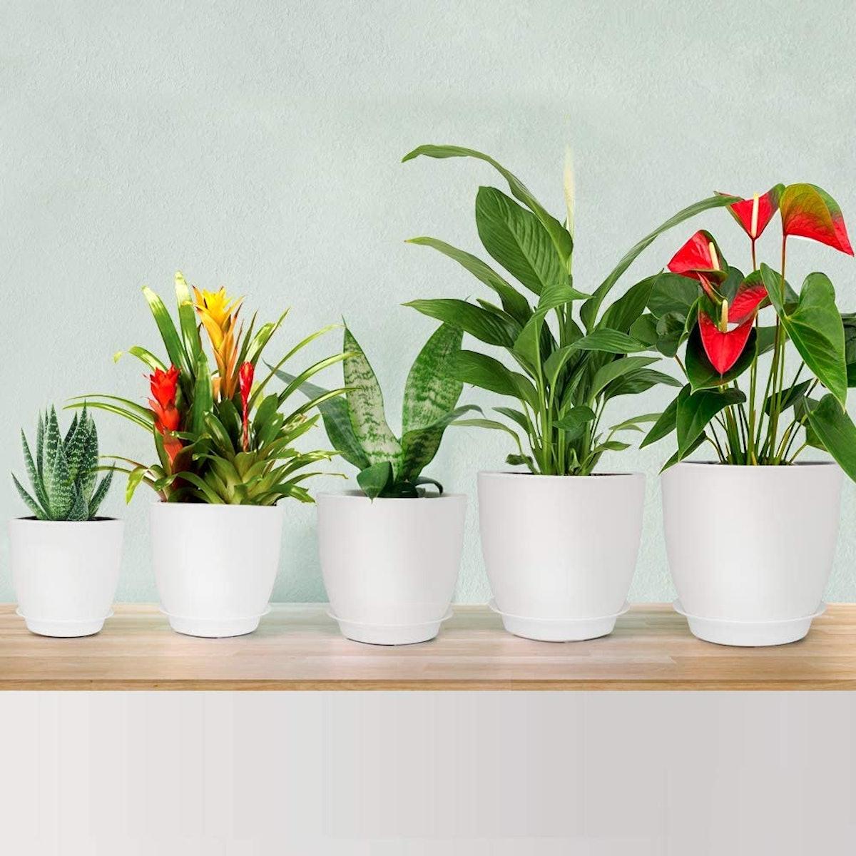 HOMENOTE Flower Pot (Set of 5)