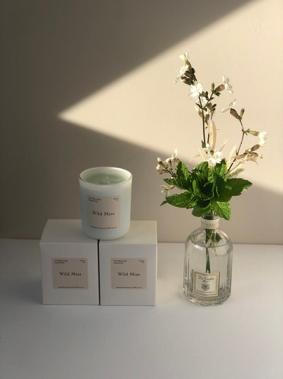 Interlude Candles Wild Mint Soy Wax Candle