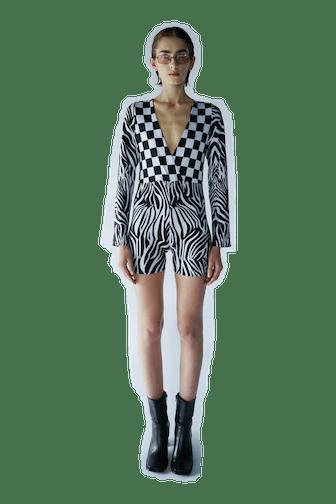 Jumper Zebra
