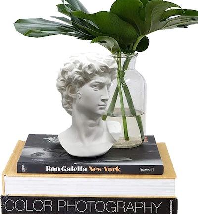 GoGift Greek Statue of David - Head Bust Statue