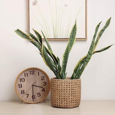SAROSORA Ceramic  Weave Pattern Flower Pot