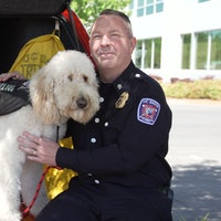Look: Adorable therapy dogs help stressed-out first responders