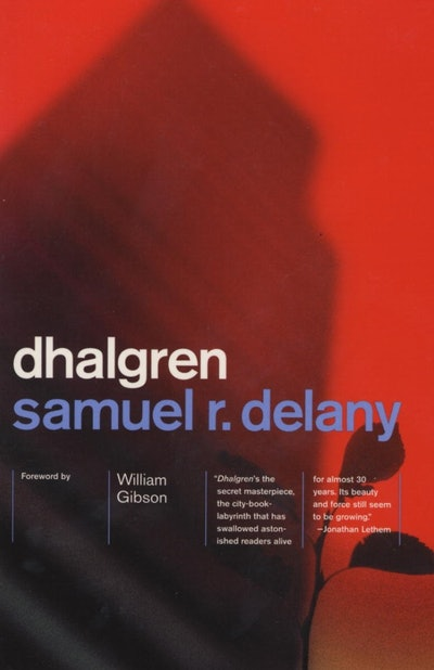 'Dhalgren' by Samuel R. Delany
