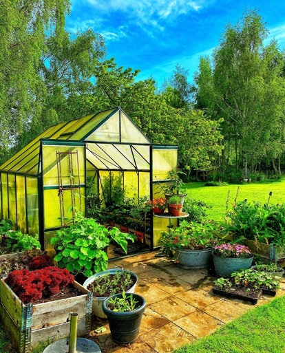 a green house with its doors open on a patio with potted vegetables