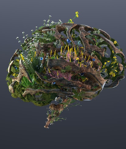 brain with plants and flowers