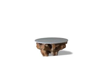 MLB Root Coffee Table
