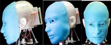 eva robot face and skull