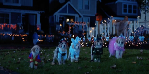 'Spooky Buddies' is streaming on Disney+ in September.