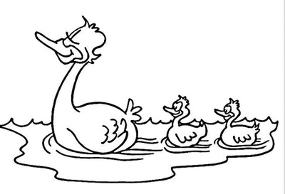 Swift Swimmers
