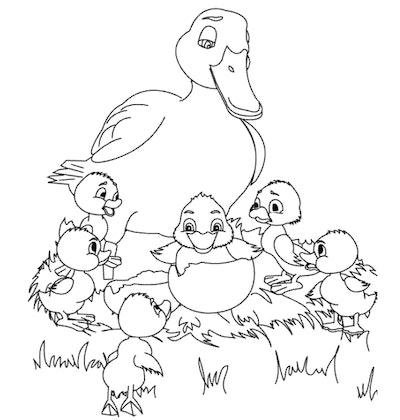 A Clutch of Ducks