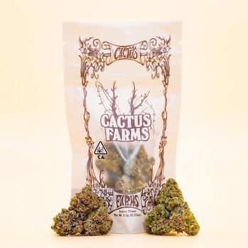 Travis Scott x Connected Cannabis Cactus Farms strain