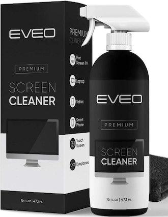 Screen Cleaner Spray Kit