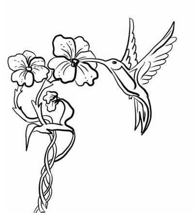 A Flying Hummingbird Coloring Page