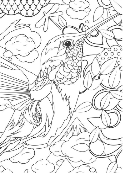A Detailed Hummingbird Coloring Page