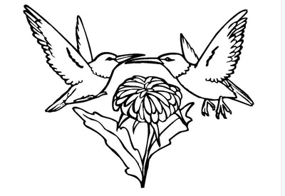 A Pair of Hummingbirds Coloring Page