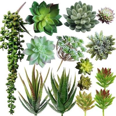 Supla Faux Succulents (14-Pack)