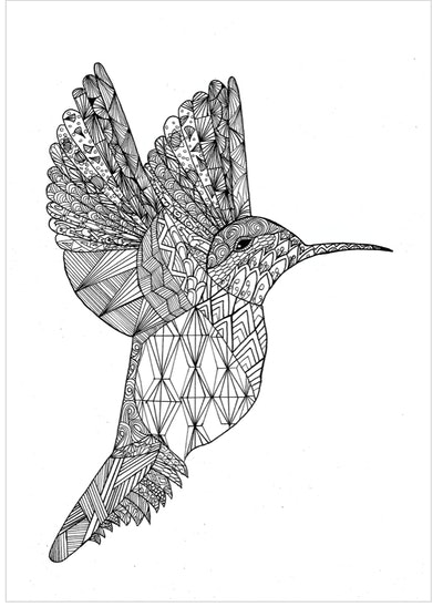 An Intricate Hummingbird Coloring Page
