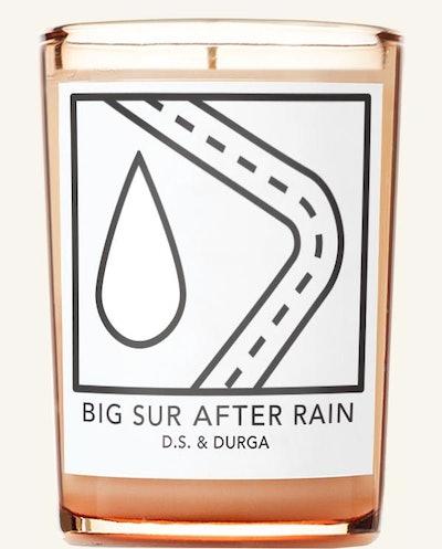 Big Sur After The Rain