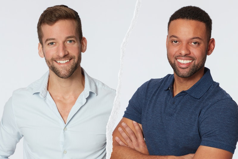 Everything To Know About 'Bachelor In Paradise' Season 7. Photo via ABC