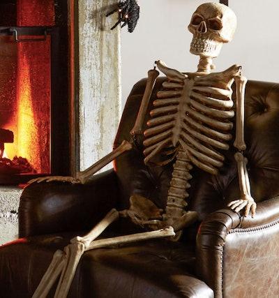 lifesize decorative skeleton