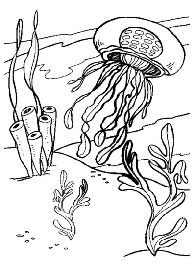 Black and white cartoon coloring page; jellyfish underwater with plants and oceanlife around it