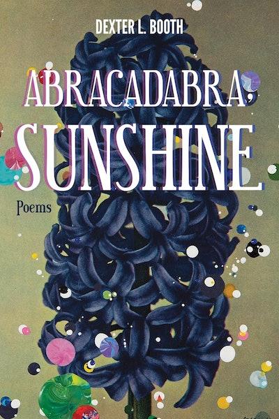 'Abracadabra, Sunshine' by Dexter L. Booth