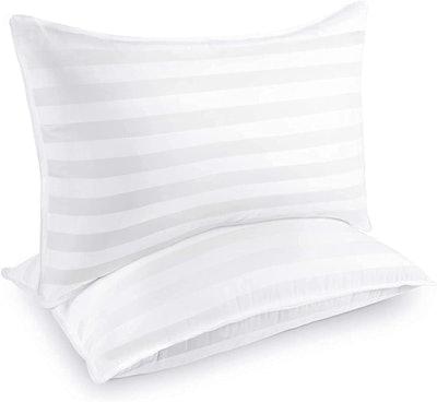 COZSINOOR Luxury Down-Alternative Pillows (Set of 2)