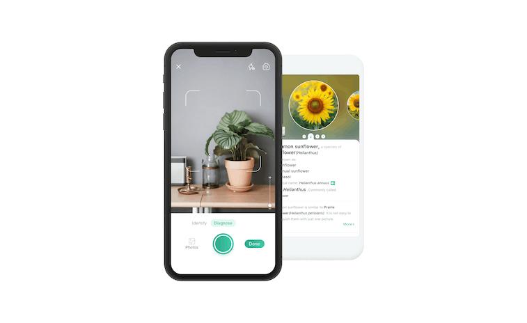 PictureThis app setup