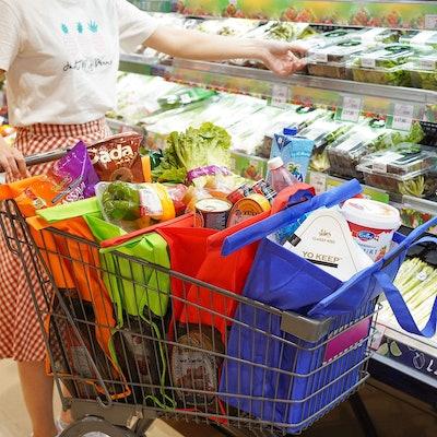 Glotoch Shopping Cart Bags (4-Pack)