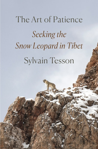 'The Art of Patience: Seeking the Snow Leopard in Tibet' by Sylvain Tesson