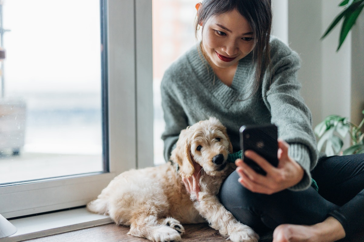 Young woman holding her phone up to take a selfie with her puppy before posting pics on Instagram wi...